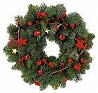 Χριστουγεννιάτικα λουλούδια-κλαδιά