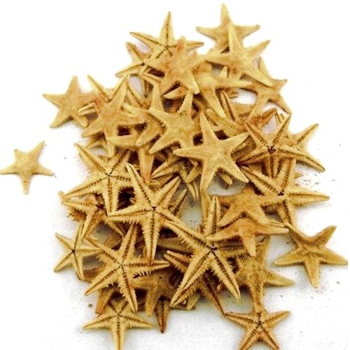 Φυσικοί  Αστερίες 1-2εκ Συσκευασία 100 τεμ