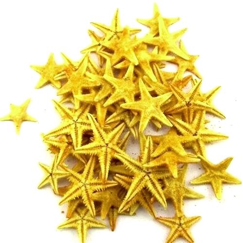 Κίτρινοι Φυσικοί Αστερίες 1-2εκ Συσκευασία 100 τεμ