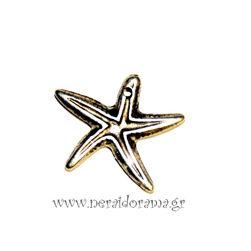 Μεταλλικός αστερίας