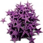 Purple Natural Starfish 1-2cm 100pcs